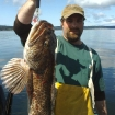 big Whidbey ling