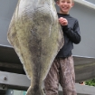 75lb Strait halibut