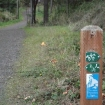 Larry Scott Trail