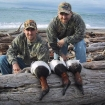 beach canvasback