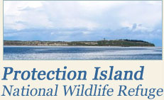 Protection Island National Wildlife Refuge