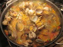 steamer clams - Copy